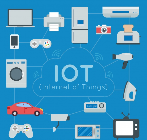 IoT Development Company